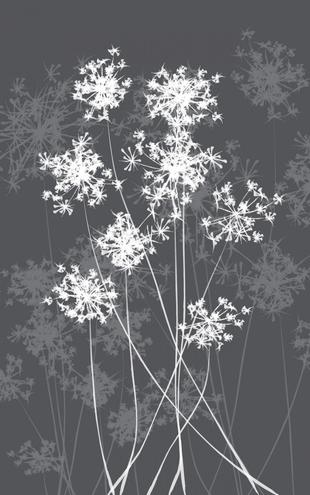 PHOTOWALL / Dandelions - Grey (e6293)