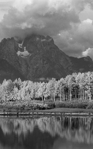 PHOTOWALL / Grand Teton - b/w (e6359)