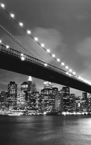 PHOTOWALL / Brooklyn Bridge at Night Green - b/w (e9039)