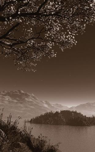 PHOTOWALL / Romantic Night - Sepia (e1397)