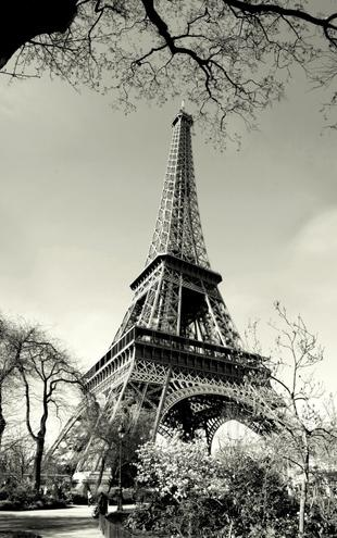 PHOTOWALL / Eiffel Tower (e1430)