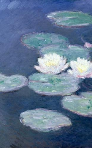 PHOTOWALL / Monet,Claude - Waterlilies (e2119)