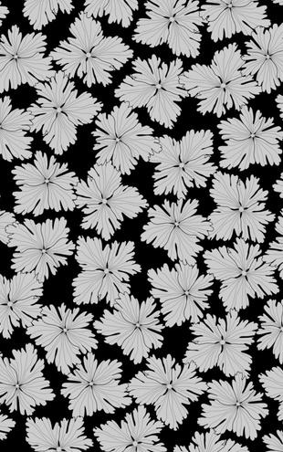 PHOTOWALL / Anemonblad - Black (e19388)