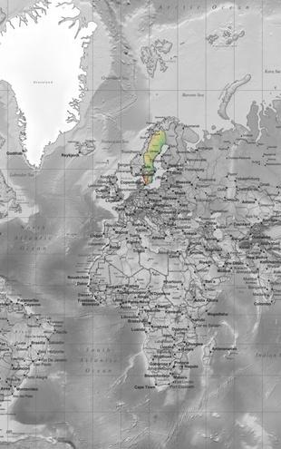 PHOTOWALL / World Map - Detailed Colorsplash (e19711)