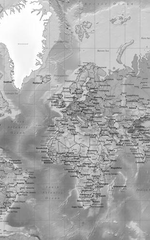 PHOTOWALL / World Map - Detailed Grey (e19712)