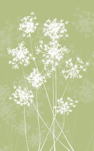 PHOTOWALL / Dandelions - Green (e20135)