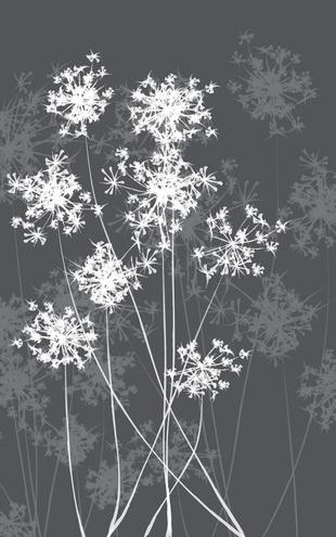 PHOTOWALL / Dandelion Grey (e20451)