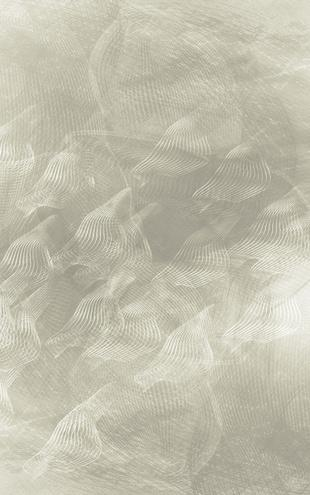PHOTOWALL / Flowing Lines - Grey (e20469)