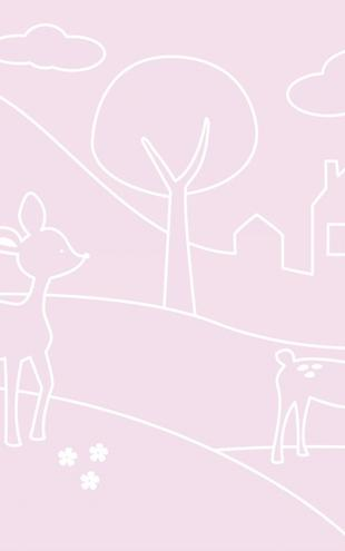 PHOTOWALL / Deer World Lines - pink (e21251)