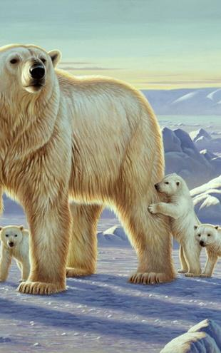 PHOTOWALL / Polar Bear with Cubs (e21708)