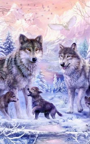 PHOTOWALL / Winter Wolf Family (e21741)