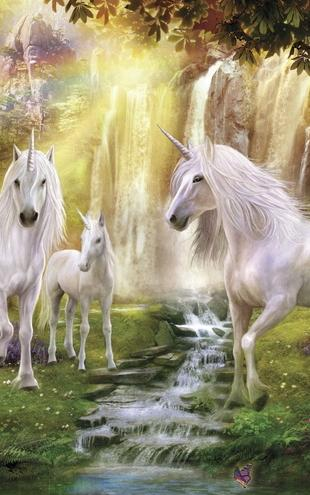 photowall / Waterfall Glade Unicorns (e21746)