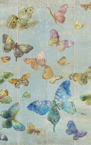 PHOTOWALL / Danhui Nai - Butterflies (e22235)