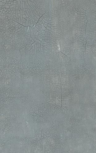 PHOTOWALL / Danhui Nai - Crackle Texture (e22237)