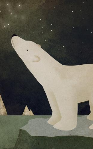 PHOTOWALL / Ryan Fowler - Constellations Polar Bear (e22284)