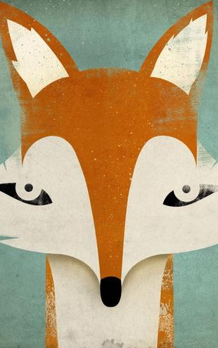 PHOTOWALL / Ryan Fowler - Fox (e22285)