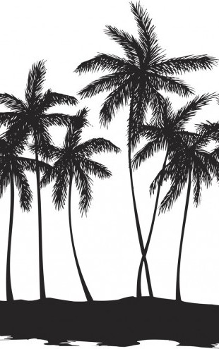 PHOTOWALL / Palms (e19687)