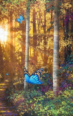 PHOTOWALL / Forest Trail with Butterflies (e22629)