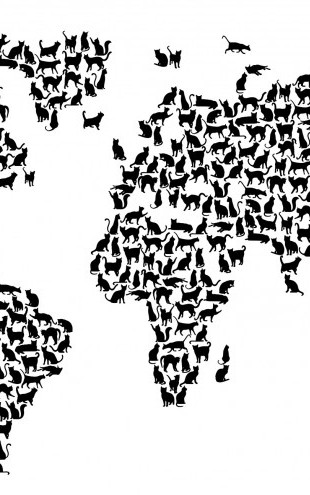 PHOTOWALL / Cats World Map Black (e22698)