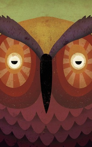 PHOTOWALL / Ryan Fowler - Owl (e22766)