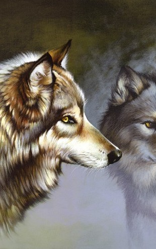 PHOTOWALL / Frost Wolves (e22997)