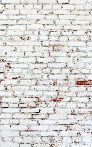 PHOTOWALL / Old Brick Wall with white and red bricks (e23184)