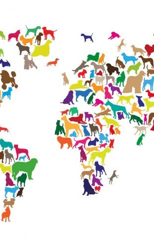 PHOTOWALL / Dogs World Map Multicolor (e24207)