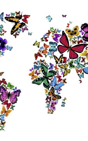 PHOTOWALL / Large Butterflies World Map (e24208)