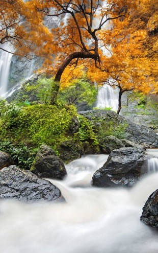 PHOTOWALL / Autumn Waterfall (e24585)