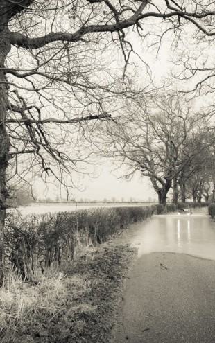 PHOTOWALL / Flooded Road (e23637)