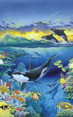 PHOTOWALL / Living Ocean - Orca (e21685)