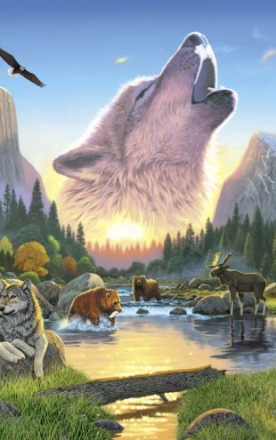 PHOTOWALL / Wilderness Harmony - Wolf (e21699)