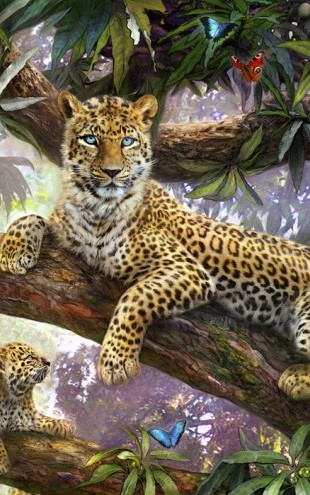 PHOTOWALL / Tree Top Leopard Family (e21750)