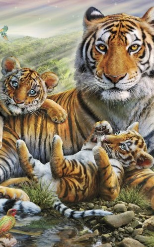 PHOTOWALL / Tiger and Cubs (e23150)