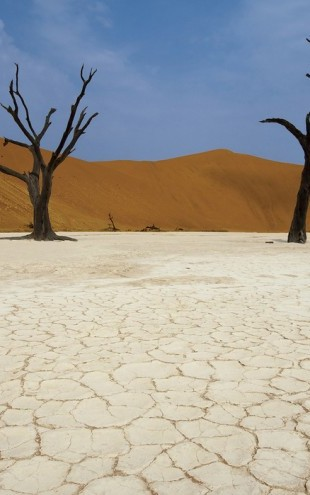 PHOTOWALL / Deadvlei, Namibia (e40395)