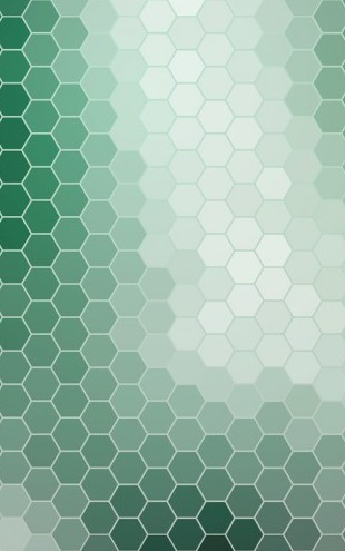 PHOTOWALL / Emerald Green Hexagons (e25013)