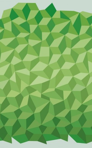 PHOTOWALL / Green Polygon Background (e25021)