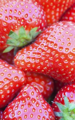 PHOTOWALL / Strawberry (e25120)