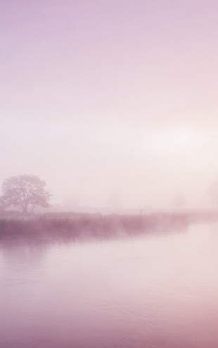 PHOTOWALL / Rose Mist over River Boyne (e29518)