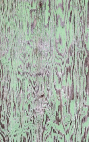PHOTOWALL / Green Painted Wooden Wall (e23782)