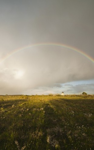 PHOTOWALL / Rainbow over Green Field (e29946)