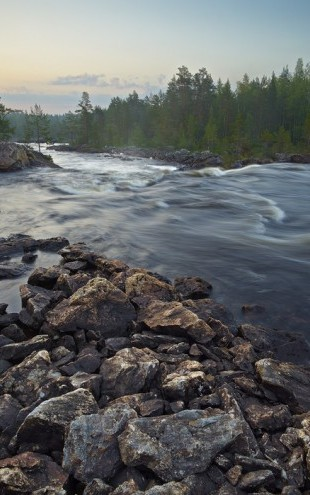 PHOTOWALL / Stream in Northern Sweden (e40438)