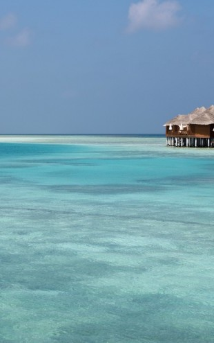 PHOTOWALL / Bungalows in the Maldives (e40447)