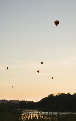 PHOTOWALL / Air Balloons over rastasjon, Sweden (e40461)