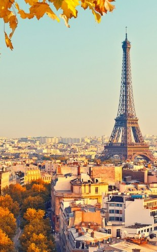 PHOTOWALL / Eiffel Tower Autumn View (e40665)