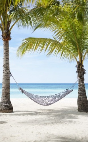 PHOTOWALL / Hammock Vacation, Bohol Philippines (e40761)