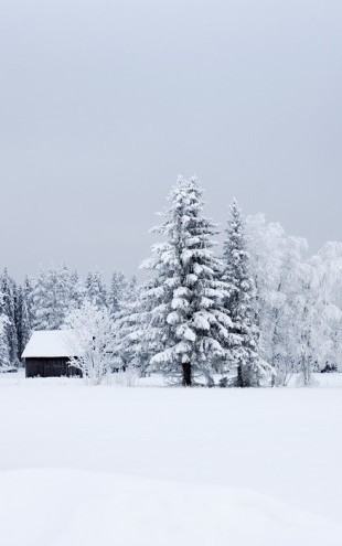PHOTOWALL / Snow Covered Barn House, Sweden (e40767)