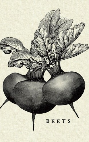 PHOTOWALL / Kitchen Illustration - Beets (e31005)