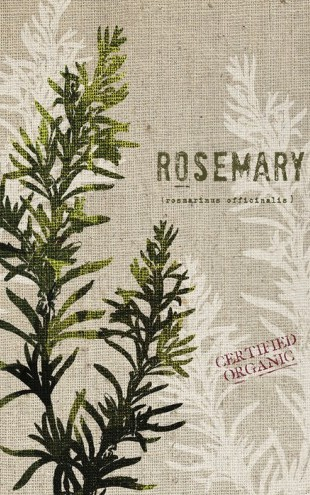 PHOTOWALL / Organic Rosemary (e31052)
