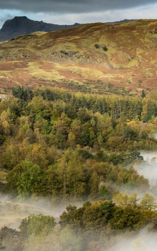 PHOTOWALL / View from Loughrigg (e40857)